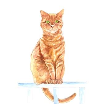 Ilustração de retrato em aquarela de gato em pé