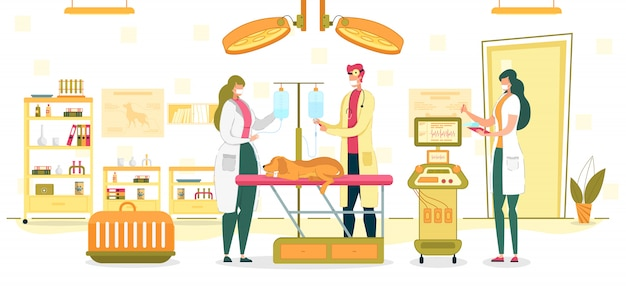 Ilustração de sala de cirurgia ou exame veterinário