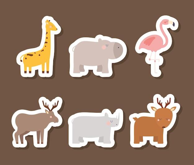 Ilustração de seis animais