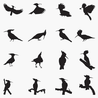 Ilustração de silhuetas de pássaros poupa