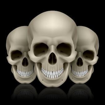 Ilustração de três crânios com reflexo