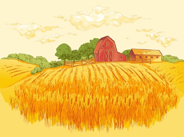 Ilustração de trigo de campo de paisagem rural