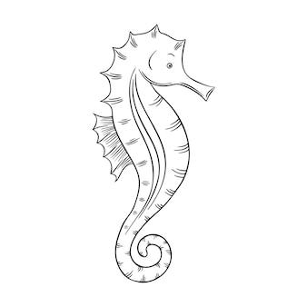 Ilustração de um cavalo-marinho isolado