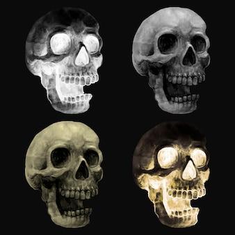 Ilustração, de, um, crânio, ícone, vetorial, para, dia das bruxas