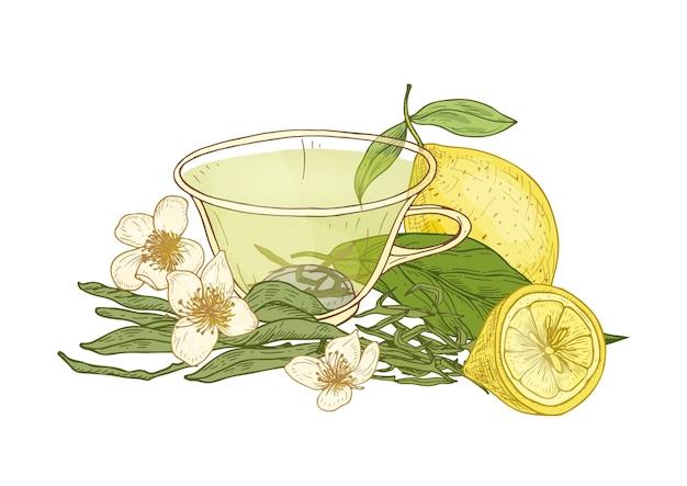Ilustração de uma xícara de chá, limão fresco, flores e folhas