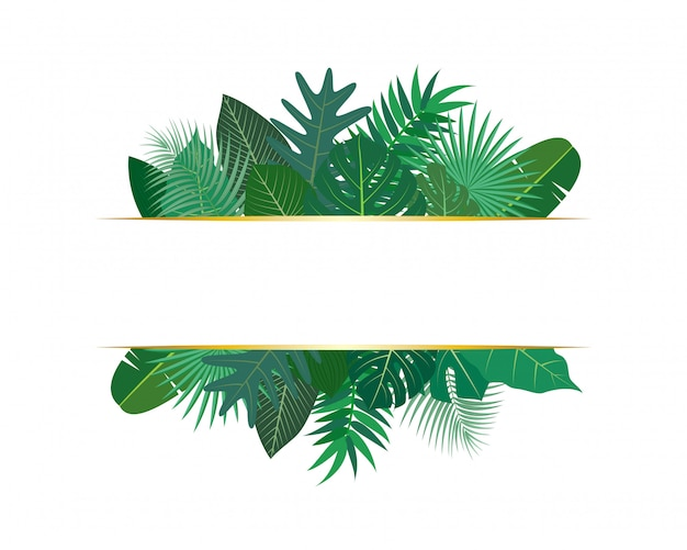Ilustração de várias folhas tropicais exóticas com banner