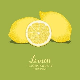 Ilustração de vegetais desenhada a mão de limão