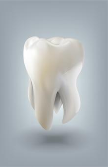 Ilustração de vetor 3d de dentes