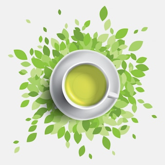 Ilustração de xícara de chá verde. folhas verdes com uma caneca de chá. conceito de saúde.