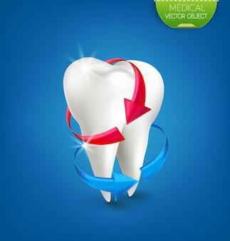 Ilustração: dente branco sobre fundo azul com uma seta vermelha e azul.