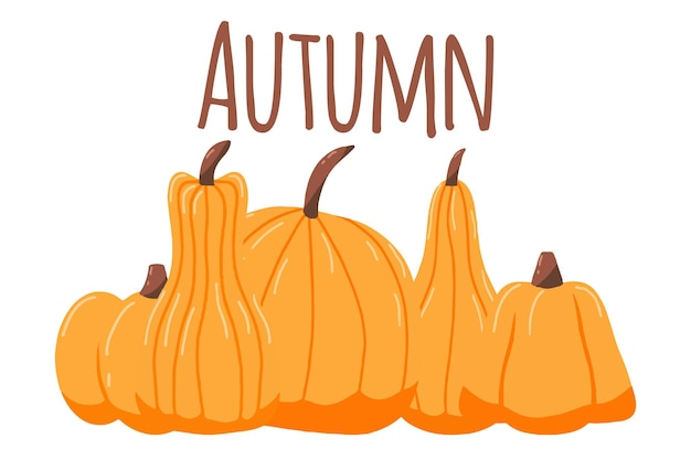 Ilustração desenhada à mão com abóboras cartaz de outono com abóboras laranja
