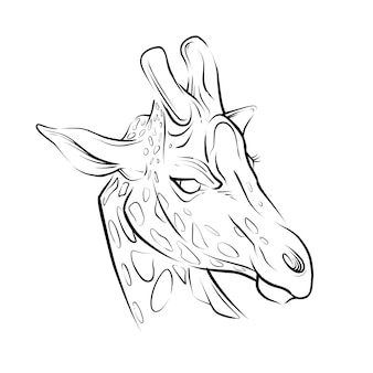 Ilustração desenhada à mão da cabeça da girafa Vetor Premium