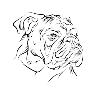Ilustração desenhada à mão de cabeça de cão-touro Vetor Premium
