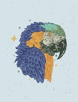 Ilustração desenhada à mão de papagaio vintage azul amarelo arara