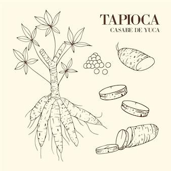 Ilustração desenhada à mão de tapioca