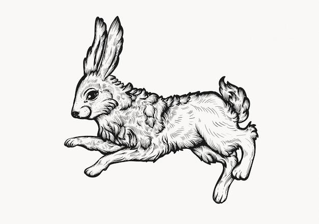 Ilustração desenhado à mão do clipart do estilo do linocut do vintage do coelhinho da páscoa.