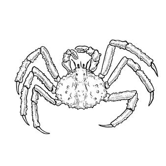Ilustração do caranguejo rei isolado no fundo branco. elemento de design de logotipo, etiqueta, emblema, sinal, cartaz, menu, camiseta. imagem