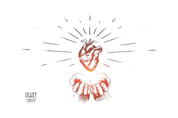 Ilustração do conceito de coração
