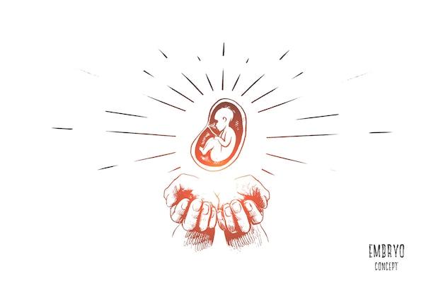Ilustração do conceito de embrião