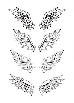 Ilustração do conjunto de coleta de asas