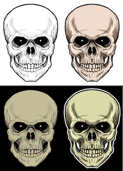 Ilustração do desenho cabeça do crânio com 4 cores de variação