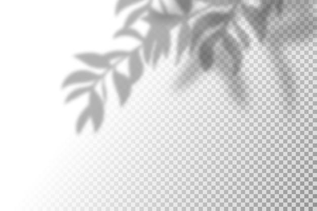 Ilustração do efeito de sobreposição de sombra realista.