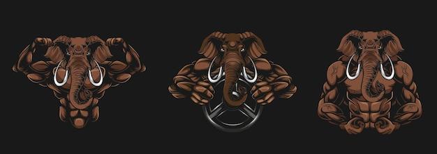 Ilustração do fisiculturista elefante