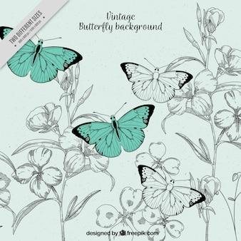 Ilustração do fundo do vintage de borboletas e flores