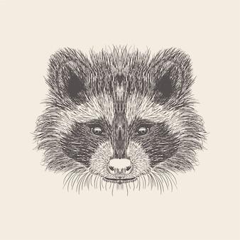 Ilustração do gato do projeto desenhado mão.