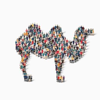 Ilustração do ícone do camelo