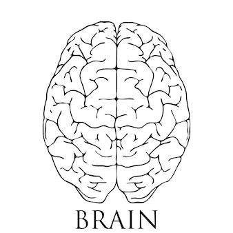 Ilustração do ícone do cérebro