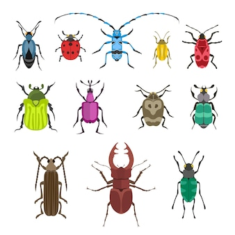 Ilustração do ícone do inseto.