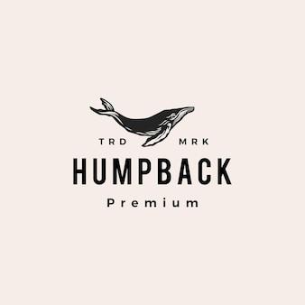 Ilustração do ícone do logotipo vintage da baleia-jubarte hipster