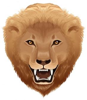Ilustração do leão - espécie pathera leo