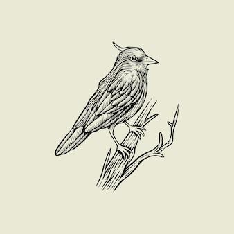 Ilustração do logotipo desenho a mão pássaro vetor vintage