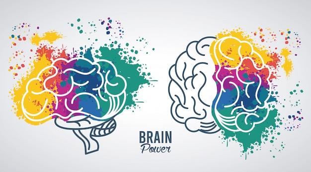 Ilustração do poder do cérebro com respingos de cores