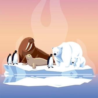 Ilustração do pólo norte de pinguins morsas e ursos polares em iceberg derretido