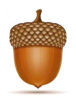 Ilustração do vetor de bolotas de carvalho outono
