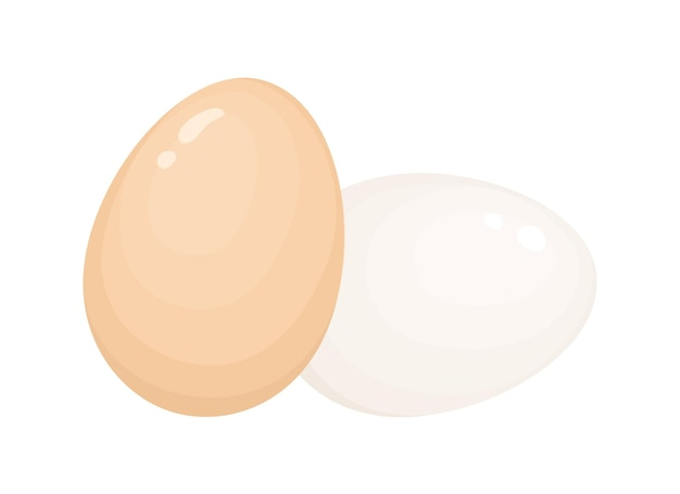 Ilustração do vetor de cascas de ovo. ovos inteiros com casca. comida de café da manhã. fonte de proteína, produto dietético, alimentação saudável, item de nutrição esportiva. ovos crus e cozidos, isolados no fundo branco.