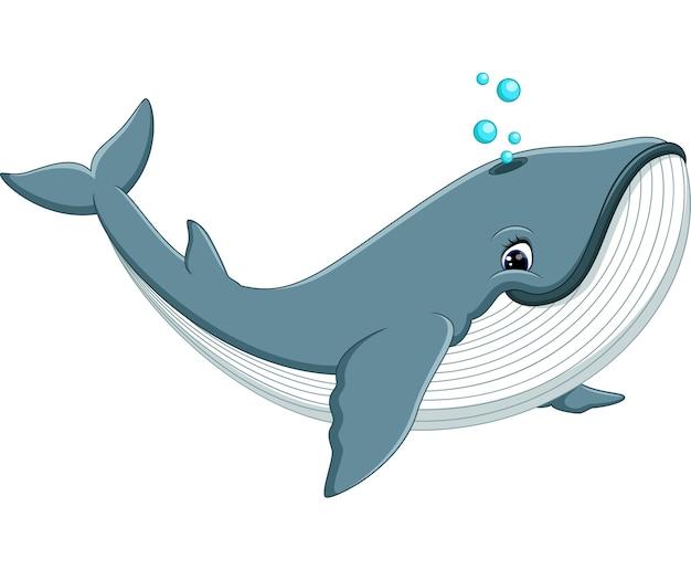 Ilustração dos desenhos animados de baleia bonito