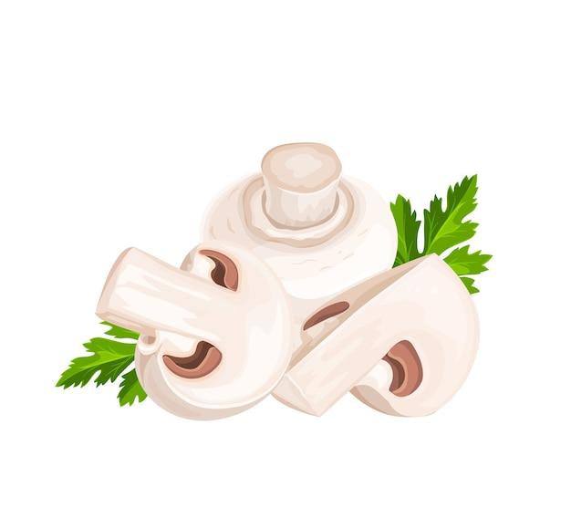 Ilustração dos desenhos animados de cogumelos champignon e folhas de salsa