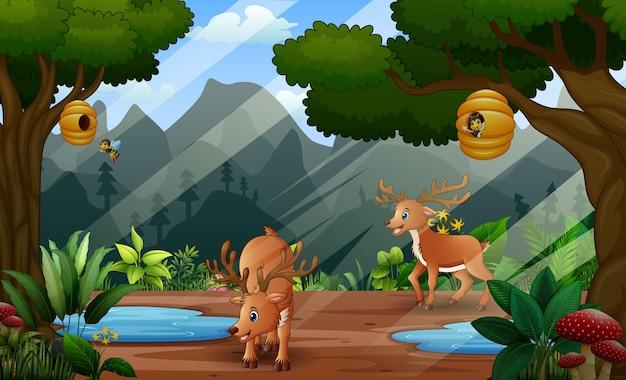 Ilustração dos desenhos animados de dois veados na paisagem natural