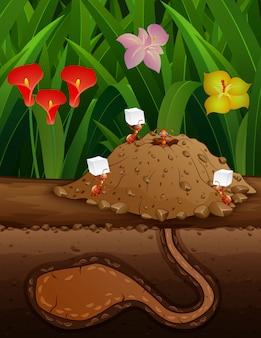 Ilustração dos desenhos animados de formigas vermelhas no subsolo