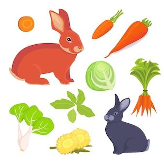 Ilustração dos desenhos animados de lebre e coelho. conjunto de coleta de comida para coelhos