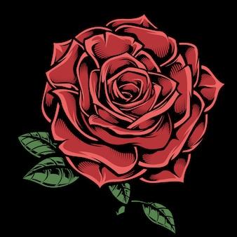 Ilustração dos desenhos animados de rosa vermelha