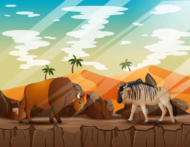 Ilustração dos desenhos animados de um gnu e um bisão no penhasco