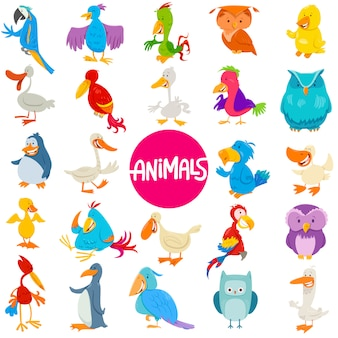 Ilustração dos desenhos animados do conjunto de personagens animais de aves