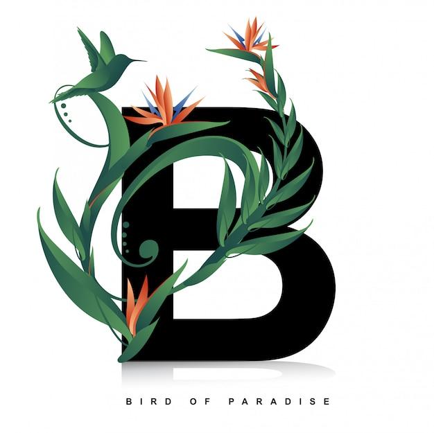 Ilustração e flor ave do paraíso