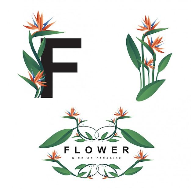 Ilustração e quadro de flor ave do paraíso