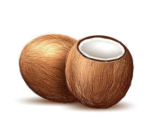Ilustração em 3d de coco com frutas frescas exóticas